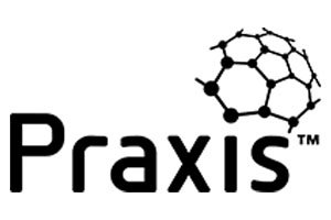 praxis framework training course