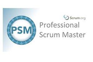 professional scrum master training course