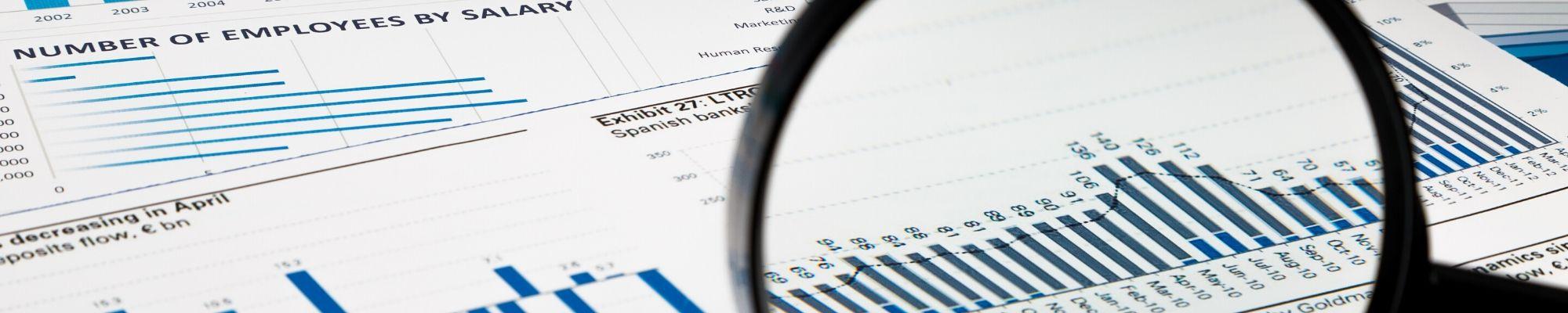 Business Relationship Management Compensation Report